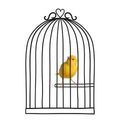 Wandsticker Vogelkäfig