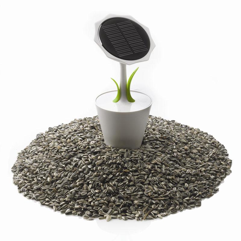 geschenkwichtel solar ladeger t blume. Black Bedroom Furniture Sets. Home Design Ideas