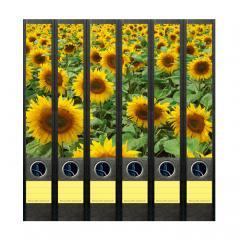 Ordner Rückenschilder Sunflower Field
