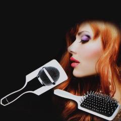 Haarbürste Mikrofon